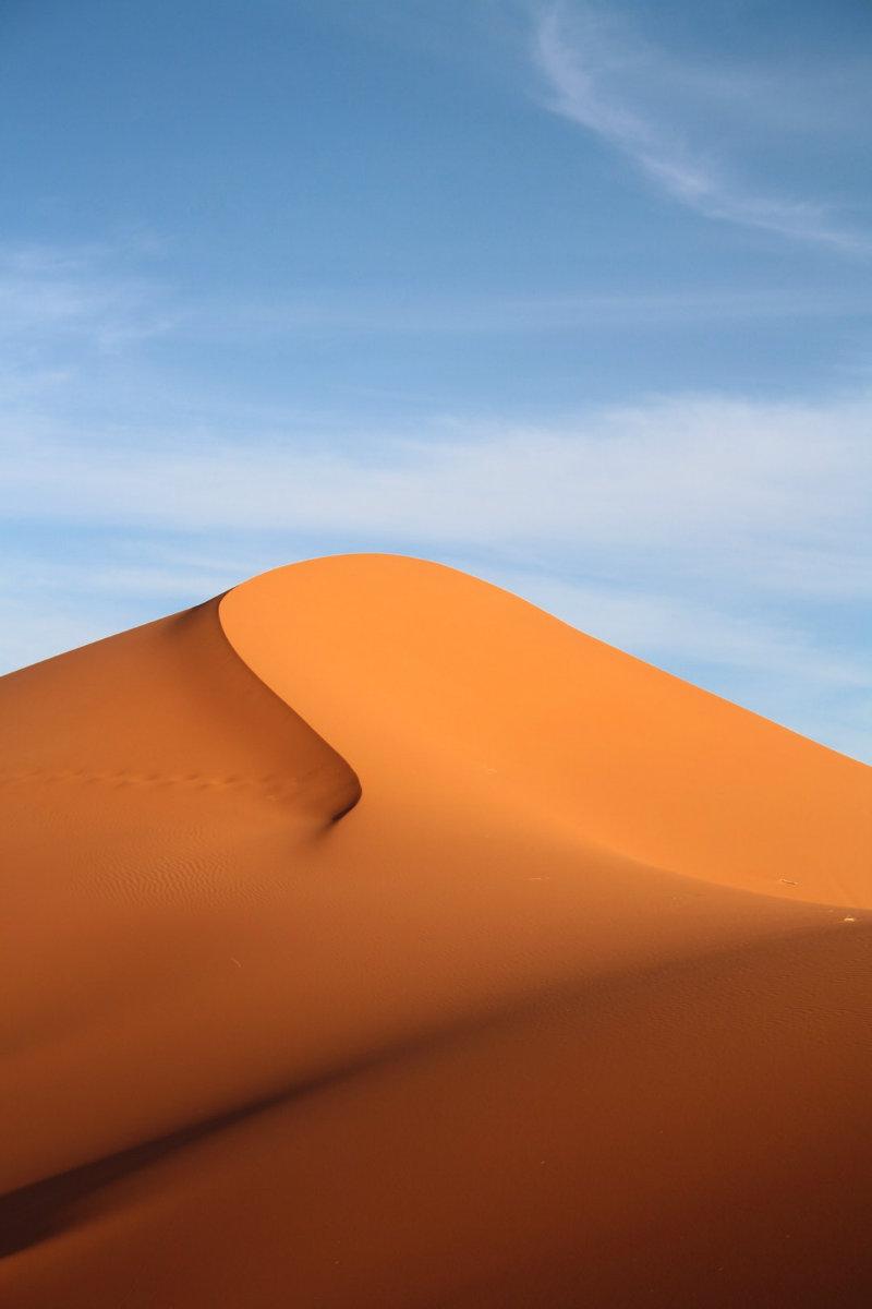 Product of the Week: Dune Door Pull door pull Product of the Week: Dune Door Pull Inspiration Dune